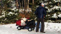"""""""Ella haría lo mismo por mí"""": la foto de un hombre llevando a un perrito paralizado se vuelve viral"""