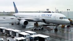 United Airlines multiplicará sus vuelos en agosto ante repunte de la demanda
