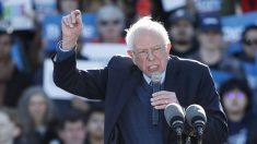 ¿Bernie Sanders realmente quiere ganar?