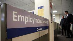 Aumentan los pedidos de seguros de desempleo en Nueva York en medio de un sólido mercado laboral