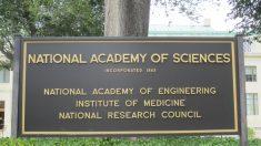 La Casa Blanca y academias nacionales movilizan a científicos para tratar el coronavirus