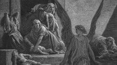 Pandemias y epidemias del pasado