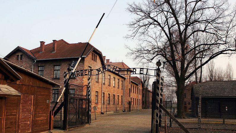 """Una vista exterior del complejo de Auschwitz, 8 de diciembre de 2004 mostrando las puertas de entrada a Auschwitz I con las palabras """"Arbeit Macht Frei"""" (El trabajo hace a uno libre) sobre la cabeza. (Scott Barbour/Getty Images)"""