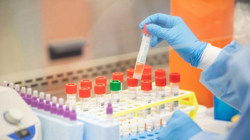 Un técnico de laboratorio comienza las pruebas semiautomáticas de COVID-19 en los laboratorios de salud de Northwell en Lake Success, Nueva York, el 11 de marzo de 2020. (Andrew Theodorakis/Getty Images)