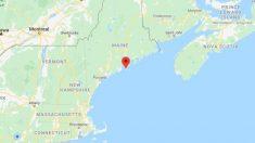 Grupo armado corta un árbol en Maine y bloquea el camino para obligar a un vecino a la cuarentena