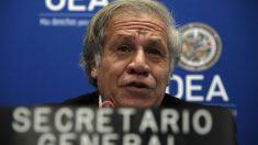 OEA pide al régimen cubano la liberación de presos políticos durante la pandemia del virus del PCCh
