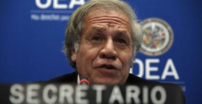 OEA pide al régimen cubano la liberación de presos políticos durante la pandemia del Covid-19
