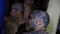 El Salvador publica fotos de pandilleros en cárceles con medidas de aislamiento tras ola de asesinatos
