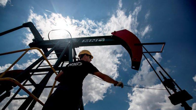 Un trabajador comprueba un cable de la estación de bombeo de petróleo durante un mantenimiento rutinario en una planta petrolera. EFE/Martin Divisek/Archivo