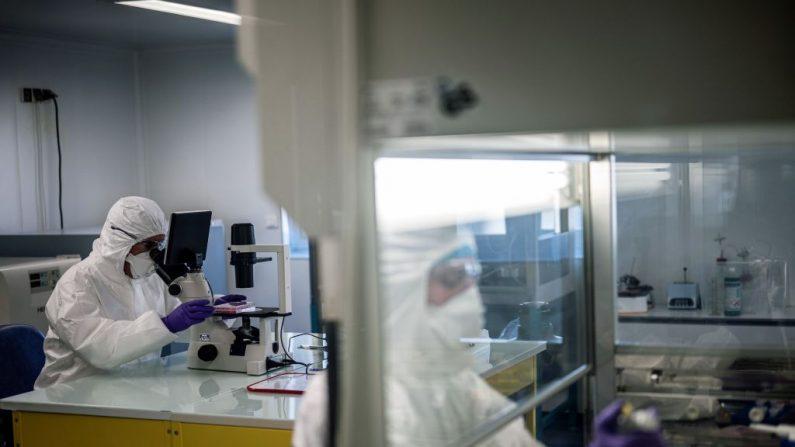 Los científicos están trabajando en el laboratorio de una universidad, el 5 de febrero de 2020, mientras tratan de encontrar un tratamiento eficaz contra el nuevo coronavirus. (Foto de JEFF PACHOUD/AFP vía Getty Images)