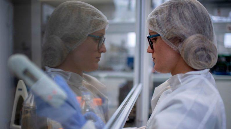Una investigadora trabaja en el desarrollo de una prueba del virus del PCCh en los laboratorios de la Universidad Federal de Río de Janeiro (UFRJ) en Río de Janeiro, Brasil, el 02 de abril de 2020. (MAURO PIMENTEL/AFP vía Getty Images)
