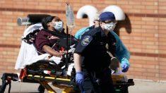 Minnesota reporta cero muertes nuevas por COVID-19