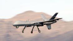 Ataque aéreo de EE. UU. mata a líder terrorista de alto rango de Al-Shabaab