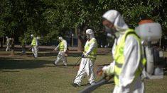 Argentina registra 43,497 casos de dengue y 10 muertes desde el pasado julio