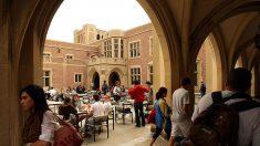 Universidades de EE.UU. cancelan programas de estudios de otoño en el extranjero
