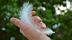 Mantenga las uñas cortas y limpias: la higiene es importante cuando se trata de COVID-19