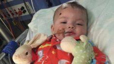 Pequeño niño valiente que fue abusado por su tío durante 4 horas sorprende con increíble progreso