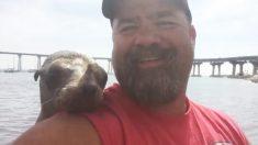 kayakista sorprendido por foca bebé que se sube a su kayak y lo abraza mientras se toma selfies