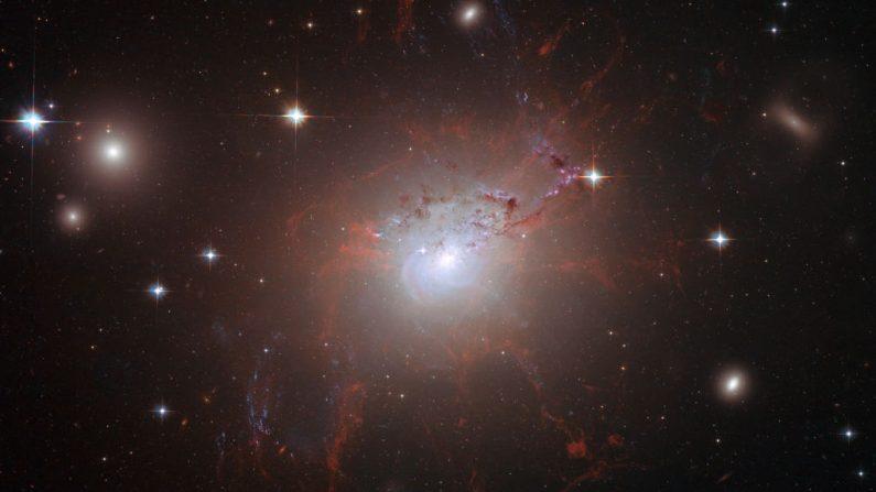 Esta imagen de la galaxia gigante y activa NGC 1275, obtenida el 21 de agosto de 2008, fue tomada con la Cámara Avanzada para Encuestas del Telescopio Espacial Hubble de la NASA/ESA en julio y agosto de 2006. (Foto de NASA/ESA vía Getty Images)