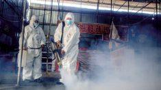 Provincia china publica rara refutación de cobertura del virus por parte de prensa estatal: documento