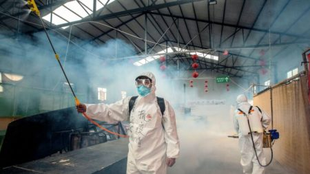 Reportan más casos de coronavirus al norte de China y en la provincia de Hubei