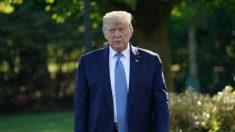Trump: Estados Unidos considera dar a la OMS no más de lo que aporta China