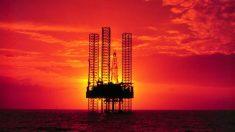Prohibir la perforación en el Golfo de México liquidaría 200,000 empleos estadounidenses, dice estudio