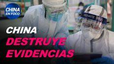 China en Foco: China elimina evidencias del virus – Ecuador y sus lazos con el régimen comunista