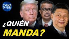 China en Foco: Trump cortará fondos a la OMS si no muestra independencia de China
