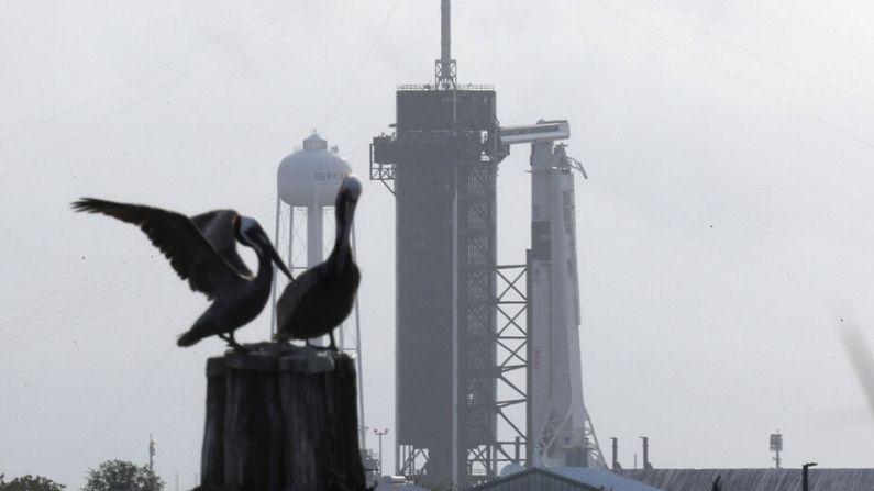 El cohete SpaceX Falcon 9 con la nave espacial Crew Dragon adjunta se observa mientras se prepara para el despegue programado para mañana desde la plataforma de lanzamiento 39A en el Centro Espacial Kennedy el 26 de mayo de 2020 en Cabo Cañaveral, Florida. (Joe Raedle/Getty Images)