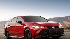 Avalon TRD 2020, Toyota experimenta con la fuente de la juventud