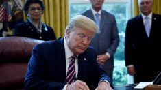 Senadores piden a Trump suspender a modo temporal el programa de trabajo de estudiantes extranjeros