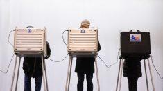 Legisladores de Illinois aprueban ley que facilita voto por correo para elecciones de noviembre