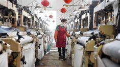 """""""No hay signos de recuperación"""" para la economía china, a medida que virus paraliza la exportación"""