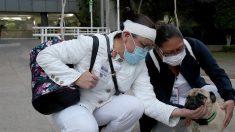 Un perro ayuda a aliviar el estrés y la ansiedad en el personal de salud de hospital mexicano