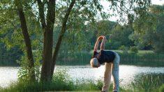 Ideas de ejercicios que las personas mayores pueden hacer mientras se quedan en casa