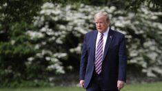 Más de 600 médicos advierten a Trump de las consecuencias de un confinamiento prolongado