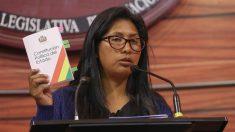 Jefa del Senado boliviano dice que promulgará la ley para elecciones