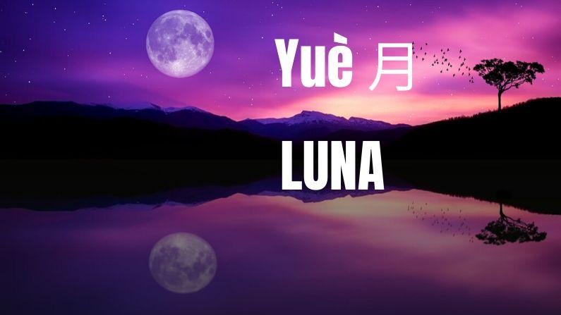 Luna. (Susan Cipriano/Pixabay)