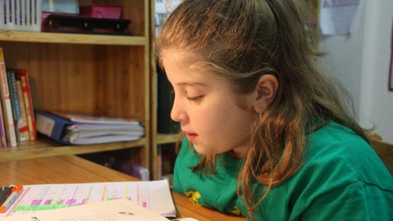 En la educación en casa, usted proporciona un ambiente en el que su hijo puede aprender mejor. Si le apoya, es ingenioso y se dedica a la tarea, tienes todo lo que necesitas. (Jimmie/Flickr)