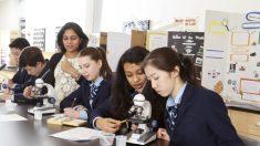 Northern Academy: Un internado en crecimiento que educa el alma
