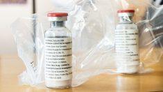 El uso temprano de remdesivir previene la neumonía en macacos con COVID-19