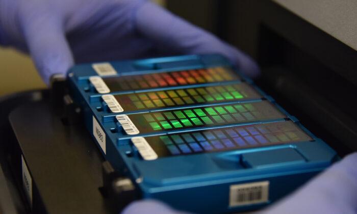 Un técnico coloca un dispositivo que contiene información de ADN en un escáner en Beijing el 22 de agosto de 2018. (GREG BAKER/AFP vía Getty Images)