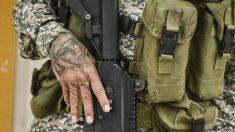 Los narcos mexicanos se fortalecen en Colombia a pesar de COVID-19