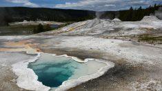 Cerca de una docena de sismos sacuden Yellowstone las 24 horas, dijo USGS
