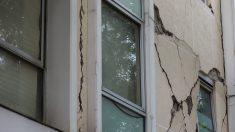 México: Al menos 2 personas muertas luego de fuerte terremoto que derribó edificios