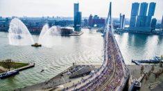 Perspectivas de la pandemia: gravedad del virus del PCCh en Países Bajos evidencia sus vínculos con China
