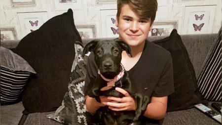Perro de seis patas encuentra su hogar con adolescente acosado, fue 'amor a primera vista'
