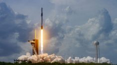 Primera misión operativa de SpaceX a la EEI se atrasa para el 31 de octubre