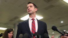 El senador Cotton dice que Twitter lo amenazó con cerrar su cuenta por un tuit